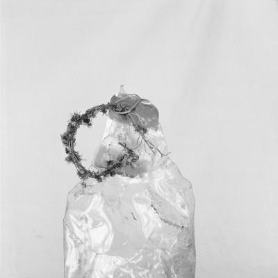Restos de primavera, 2010 // Silver gelatin print