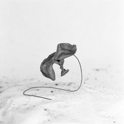 Gaviota, 2010 // Silver gelatin print