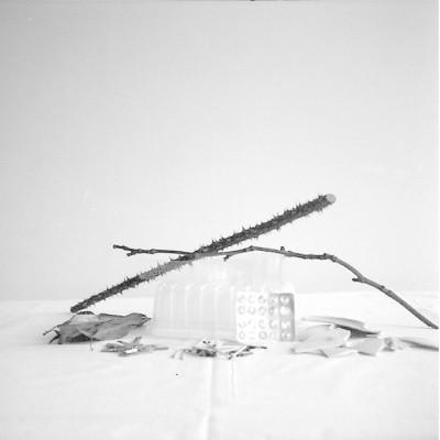 Suma 4, 2009 // Silver gelatin print