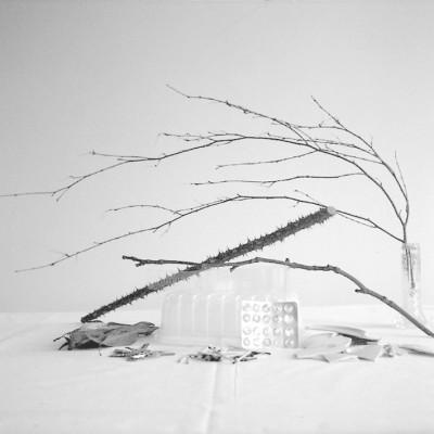 Suma 5, 2009 // Silver gelatin print