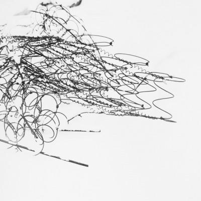 Matratzen 1, 2010 // Silver gelatin print // ca. 25 x 25 cm (30,5 x 40,6 cm)