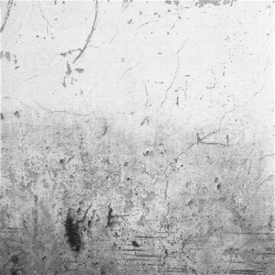 Pared 5, 2010 / Silver gelatin print /