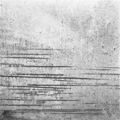 Pared 6, 2010 / Silver gelatin print /