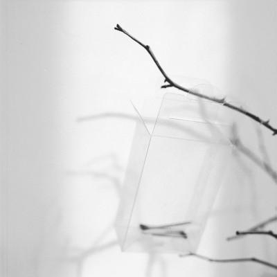 Galgenvogel, 2010 // Silver gelatin print