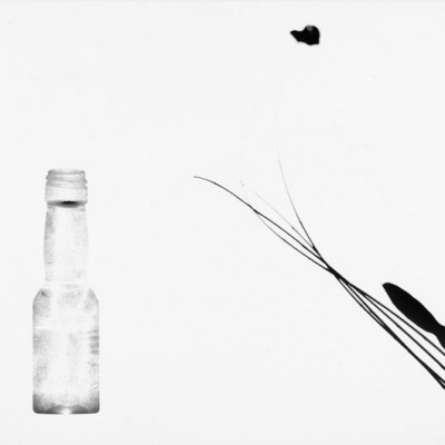 Flasche und Blume, 2010 / reversed photogram on silver cotton paper / ca. 24 x 30,5 cm