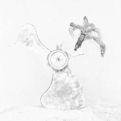 Arrecife 7, 2011 / Silver gelatin print /