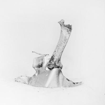 Arrecife 8, 2011 / Silver gelatin print /
