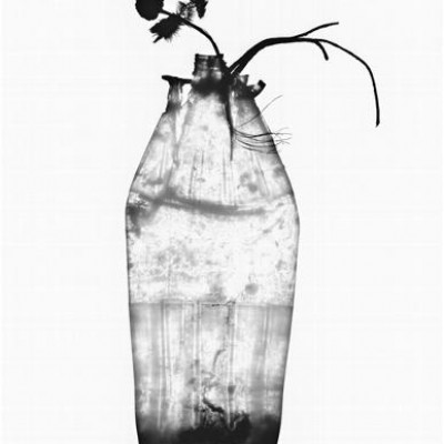 Flasche 9, 2011 / reversed photogram on cotton paper / ca. 30,5 x 40,6 cm