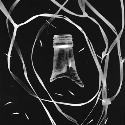 Ecce Homo, 2013 // photogram on silver gelatin paper // ca. 18 x 24 cm