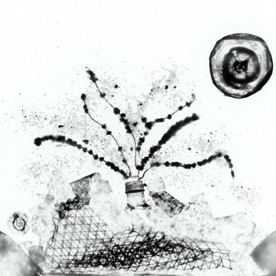 Volcán en erupción, 2011 / reversed photogram on cotton paper / ca. 40,6 x 50,8 cm