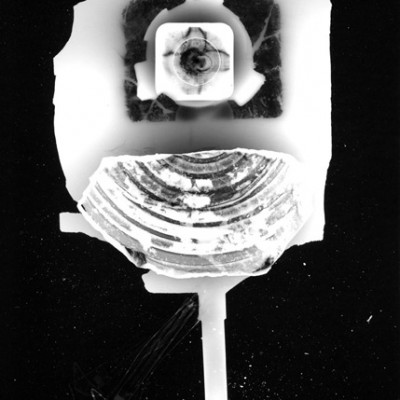 Abisal 4, 2012 / photogram on silver bromide paper / ca. 13 x 18 cm