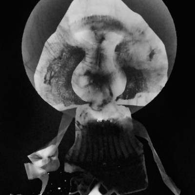 Abisal 7, 2012 / photogram on silver bromide paper / ca. 13 x 18 cm