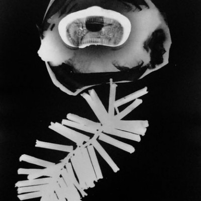 Abisal 19, 2012 / photogram on silver bromide paper / ca. 13 x 18 cm