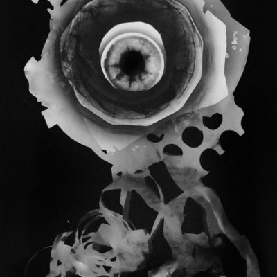 Abisal 22, 2012 / photogram on silver bromide paper / ca. 13 x 18 cm