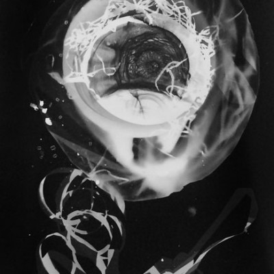 Abisal 23, 2012 / photogram on silver bromide paper / ca. 13 x 18 cm
