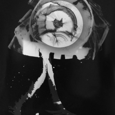 Abisal 30, 2012 / photogram on silver bromide paper / ca. 13 x 18 cm