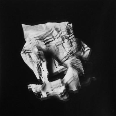 Fly 4, 2013 / Silver gelatin print /