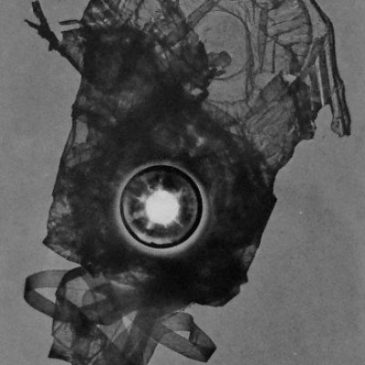 Abisal 37, 2013 / photogram on silver bromide paper / ca. 13 x 18 cm