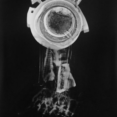 Abisal 38, 2013 / photogram on silver bromide paper / ca. 13 x 18 cm