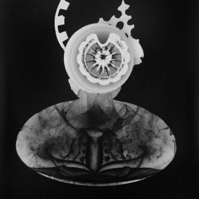 Abisal 40, 2013 / photogram on silver gelatin paper / ca. 18 x 24 cm