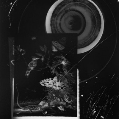 Lablandschaft 2, 2013 // photogram on silver gelatin paper // ca. 13 x 18 cm