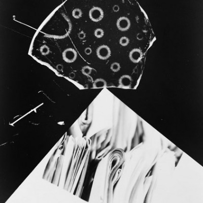 Lablandschaft 3, 2013 // photogram on silver gelatin paper // ca. 13 x 18 cm