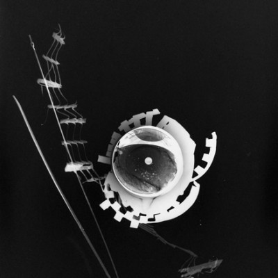 Lichtspiel 00, 2013 / photogram on silver gelatin paper / ca. 30,5 x 40,6 cm