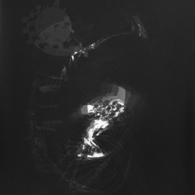 Lichtspiel 002, 2013 / photogram on silver gelatin paper / ca. 30,5 x 40,6 cm