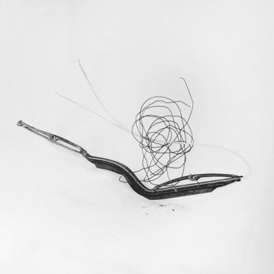 Fly 6, 2014 / Silver gelatin print /