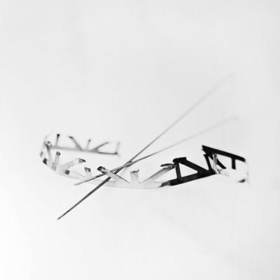 Fly 7, 2014 / Silver gelatin print /