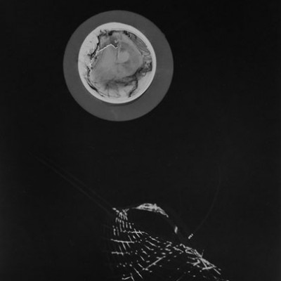 Lichtspiel 4, 2014 / photogram on silver gelatin paper / ca. 18 x 24 cm